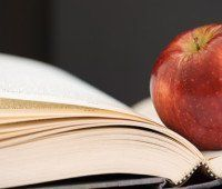 Libros de dietas, ¿fraude o realidad?