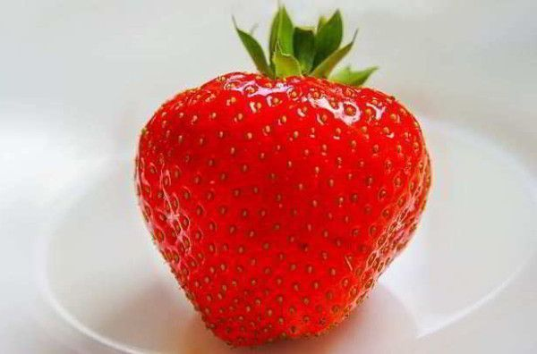 dieta de frutas y verduras para perder peso