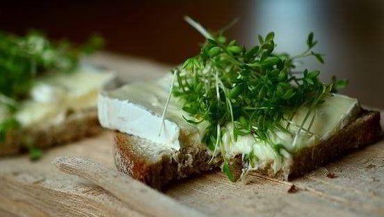 recetas de verduras para la dieta