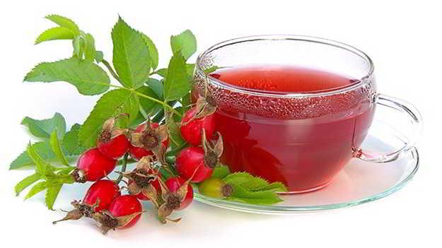 adelgazar con plantas medicinales