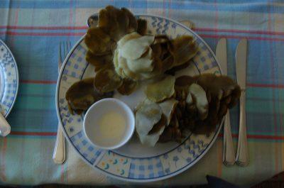 Achicora y Apio recetas sanas para adelgazar