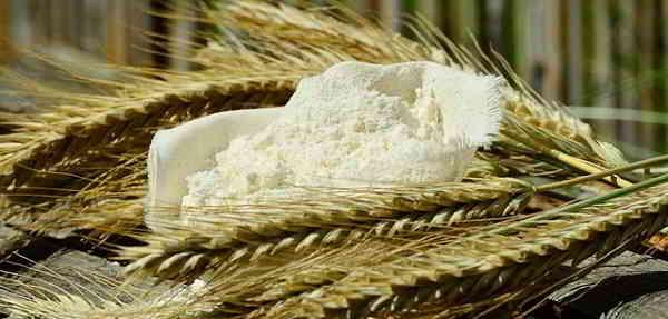 Beneficios y Propiedades del Castaño de India y la Cebada