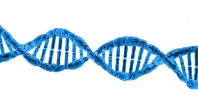 Proteina creada por ordenador