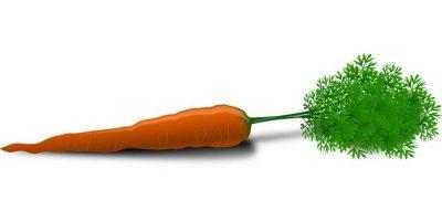 La zanahoria es una gran fuente de vitamina B