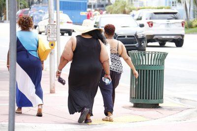 Las personas obesas tienen concentraciones de carnitina bajas