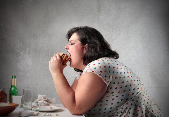 Datos importantes sobre nuestra digestión