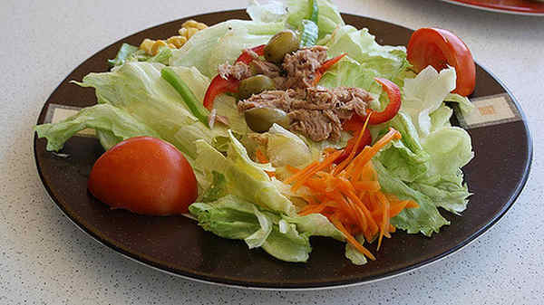 Conociendo sobre las dietas vegetales, vegetarianos y vegetalinos