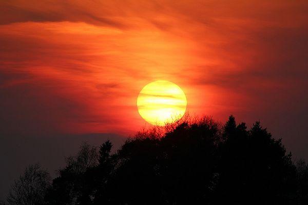 Cúrese con el sol y la relación enfermo - medico