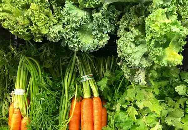 Los nutrientes importantes en una dieta balanceada