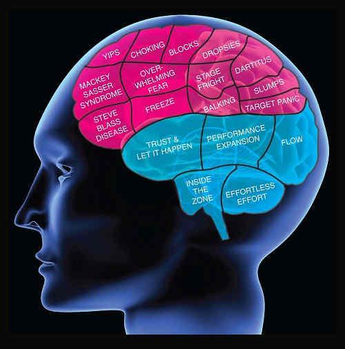 Remedios Caseros Nerviosismo, Miedo y Neurosis