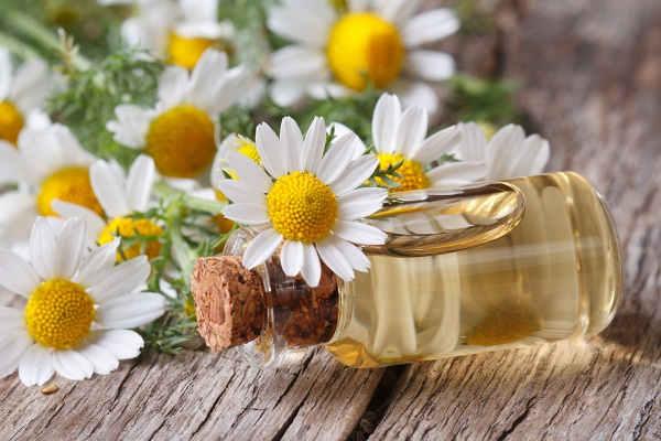 Remedios Naturales para la Flebitis y los Esguinces