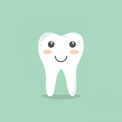 El silice ayuda en la formación de los dientes