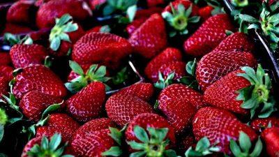 Las fresas son buenas para la artritis