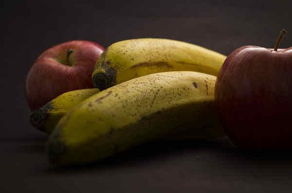 Dieta frugivora y la dieta de platanos