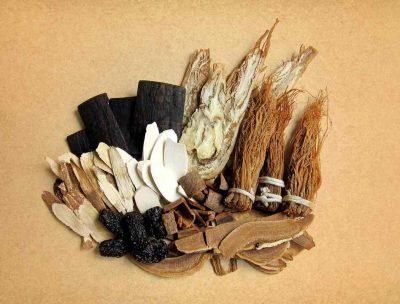 El ginseng se usa en china desde hace 5.000 años