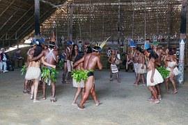 Los indios amazónicos conocían el guaraná desde hace tiempo