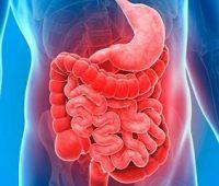 Remedios Caseros para Hemorragia Gástrica e Intestinal