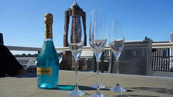 Propiedades y atributos de vino