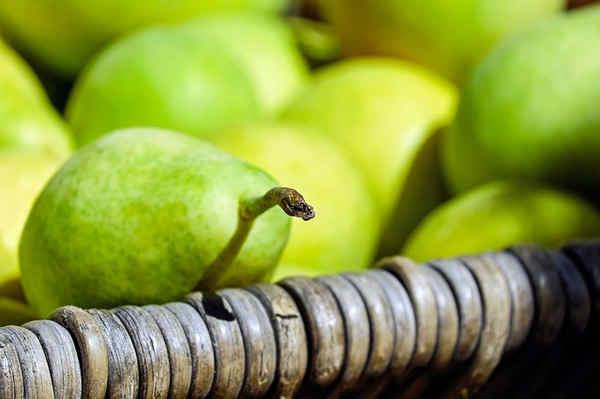 Las frutas y su importancia