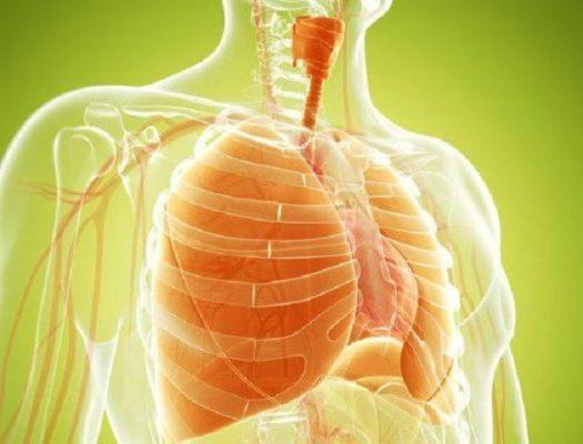 Remedios Caseros para Enfisema y Edema Pulmonar