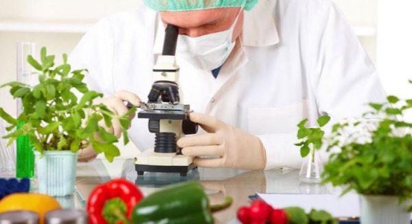 Saber Cocinar, Un Arte Científico