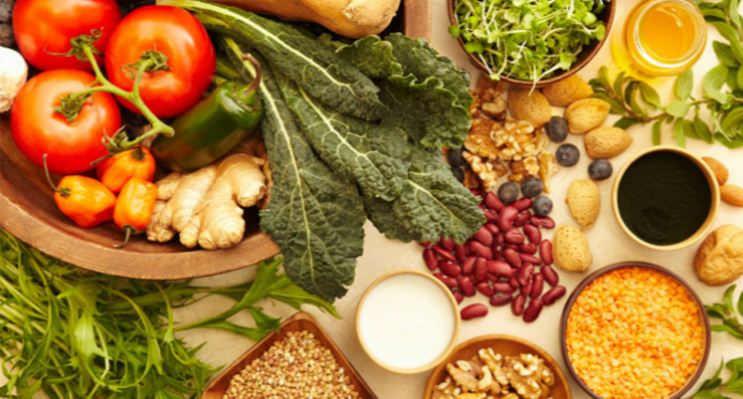 Dieta de Lácteos, Vegetales y Proteínas