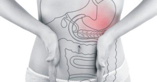 El misterioso Proceso Digestivo