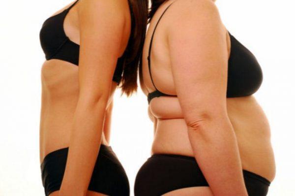 La Estrecha Relación entre la Grasa y las Hormonas