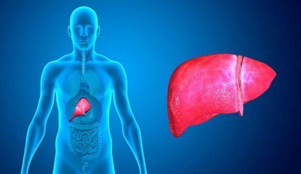Remedios Caseros para Afecciones de Hígado