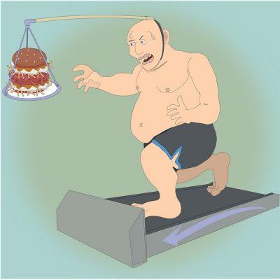La obesidad se define como una acumulación excesiva de tejido adiposo